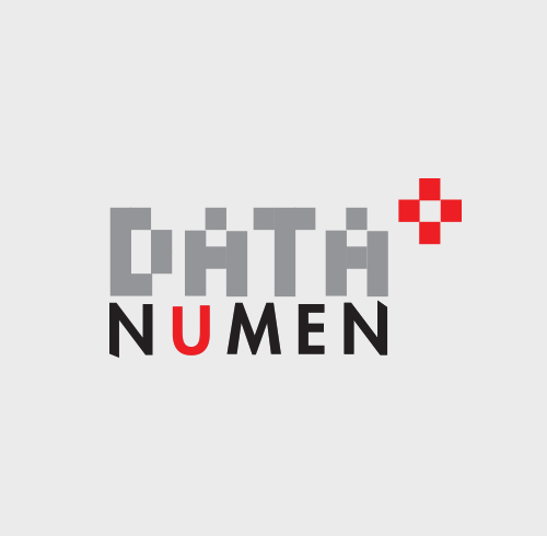 Data Numen Logo Design