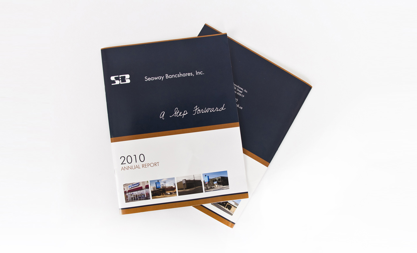Financial Annual Report Design