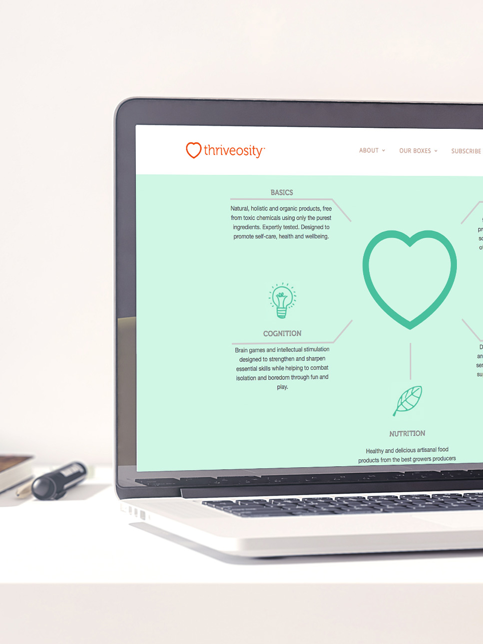 4-shopify-web-design