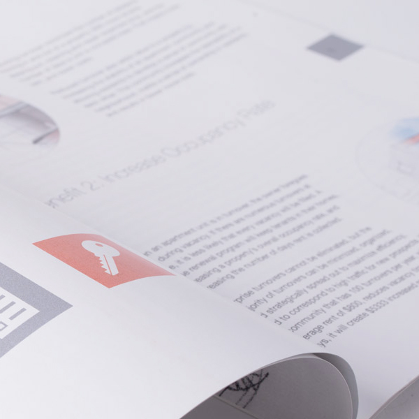 White Paper Layout Design