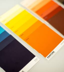 Visual Branding Colors